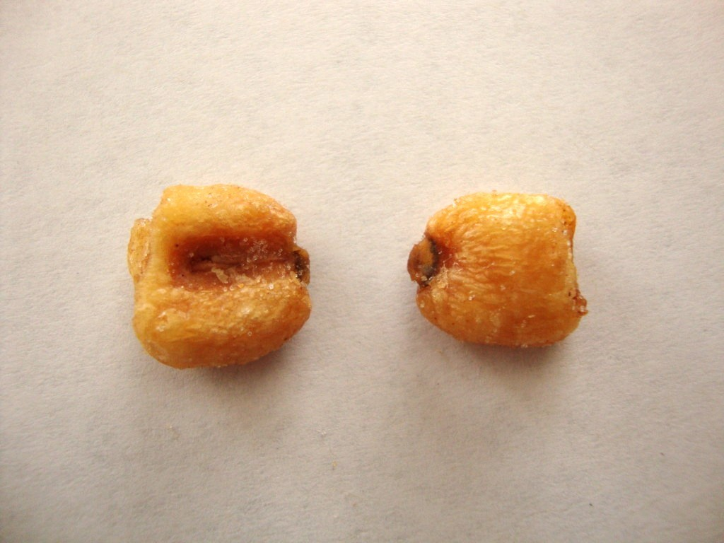 Corn Nuts, Original